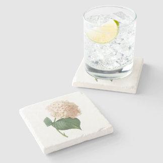 hortensia(Hydrangea sp.) by Redouté Stone Beverage Coaster