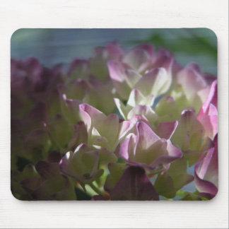 Hortensia rosado alfombrillas de ratones