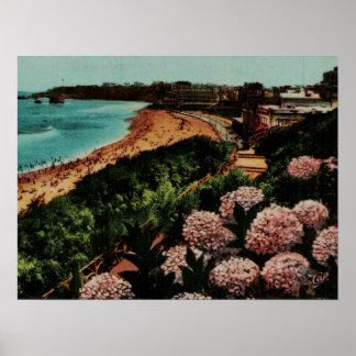Hortensias Francia de Biarritz Póster