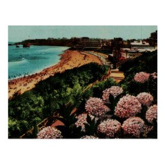 Hortensias Francia de Biarritz Tarjetas Postales