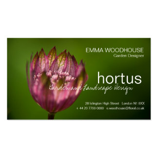 Hortus - Great Masterwort Business Card
