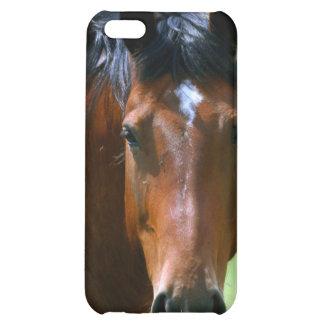Hose picture 2 iPhone 5C case