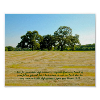 Hosea 10:12 Reap & Sow poster