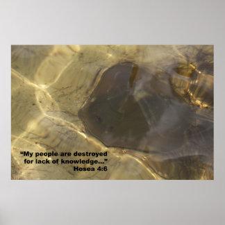 Hosea 4:6 Scripture Poster, Version E
