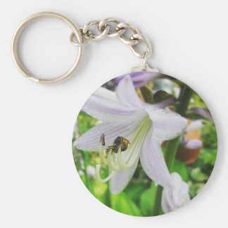 Hosta and an insect basic round button keychain