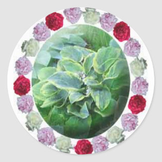 Hosta and Peony Peonies Flowers Gardening Sticker