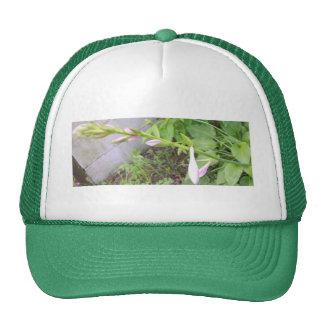 Hosta Buds Trucker Hat