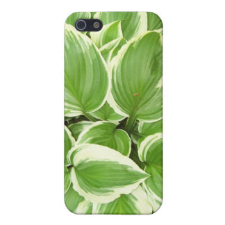 Hosta Cover For iPhone 5