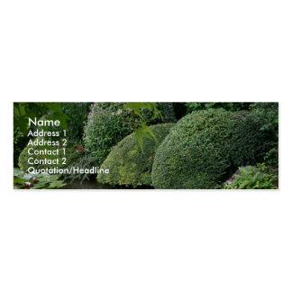 Hosta en un jardín 2 del zen