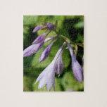 Hosta floreciente rompecabezas con fotos
