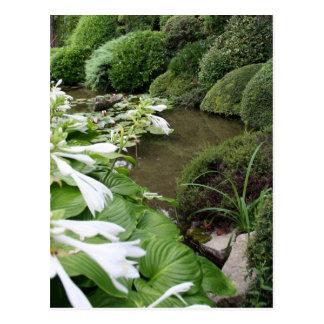Hosta in a Zen Garden 1 Postcard