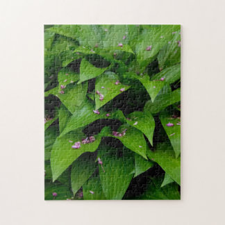 Hosta Leaves and Pink Petals Puzzle