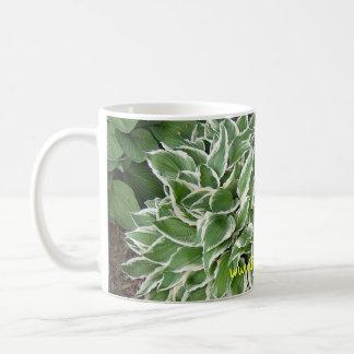 hosta mug