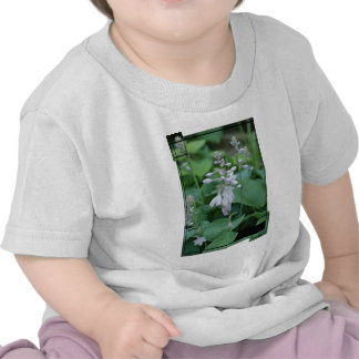 Hosta Plant  Baby T-Shirt