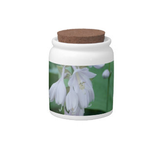 Hosta Plant Candy Jar