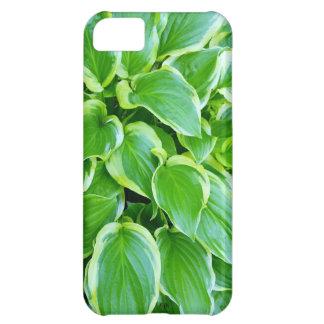 Hosta Plant Leaves Garden photograph iPhone 5C Cover