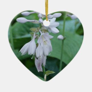 Hosta Plant Ornament