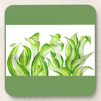 'Hosta with the Mosta' on Coasters Set