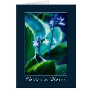 Hostas in Bloom Greeting Card