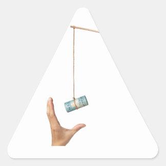 Hostigamiento con el dinero de Nueva Zelanda Pegatina Triangular
