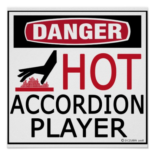 Hot Accordion Player Poster