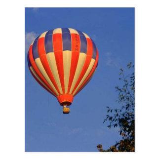 Hot Air Balloon (7) Postcard