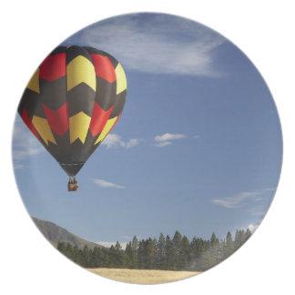 Hot Air Balloon near Wanaka, South Island, New Melamine Plate