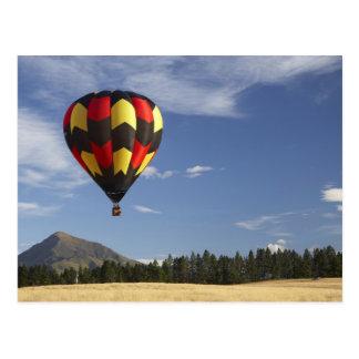 Hot Air Balloon near Wanaka South Island New Post Card