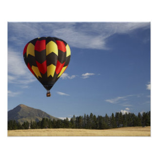 Hot Air Balloon near Wanaka, South Island, New Poster