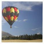 Hot Air Balloon near Wanaka, South Island, New Tile