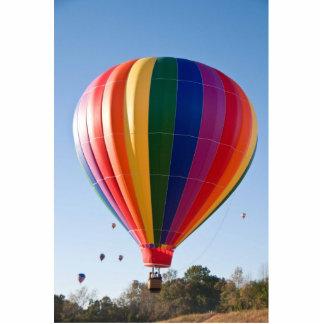 Hot Air Balloon Photo Sculpture Ornament