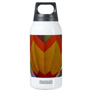 Hot air balloon rally insulated water bottle