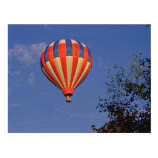Hot Air Balloon  Red / Blue / Yellow Postcard