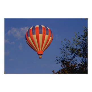 Hot Air Balloon  Red / Blue / Yellow Poster