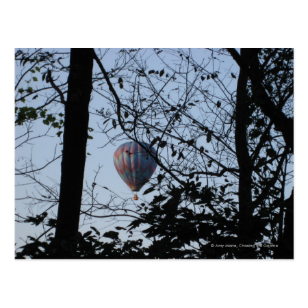 Hot air balloon Through Trees Postcard