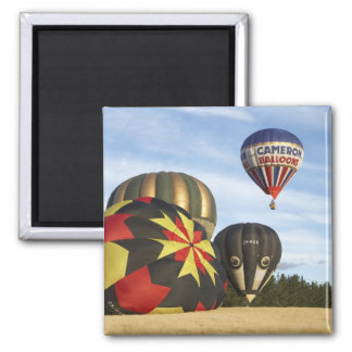 Hot Air Balloons near Wanaka, South Island, New 2 Inch Square Magnet