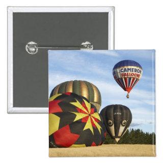 Hot Air Balloons near Wanaka, South Island, New Pinback Button