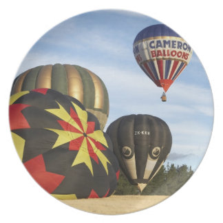Hot Air Balloons near Wanaka, South Island, New Plate