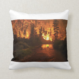 Hot and Cold Sided Pillow