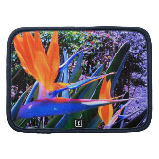 Hot Colors Bird-of-Paradise Planner