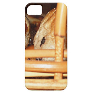 Hot Cross Buns Easter Basket #2 iPhone 5/5S Cases