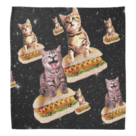 hot dog cat invasion bandana