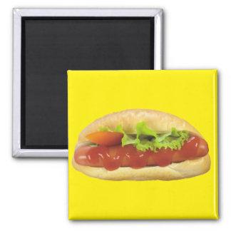 Hot Dog Magnet