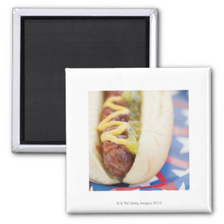 Hot Dog on Red, White, and Blue Plate Magnet