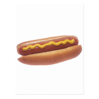 Hot Dog with Mustard Postcard