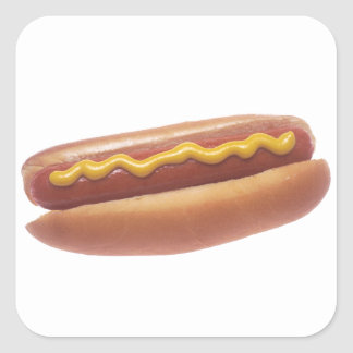 Hot Dog with Mustard Square Sticker