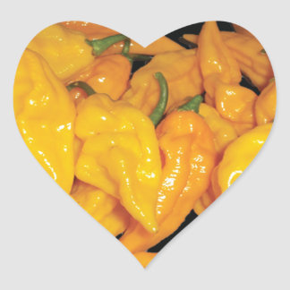 Hot Fatalii Chilli Pepper Heart Sticker