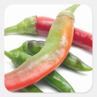 Hot five chili square sticker