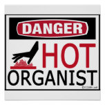 Hot Organist Print