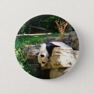 Hot Panda Button
